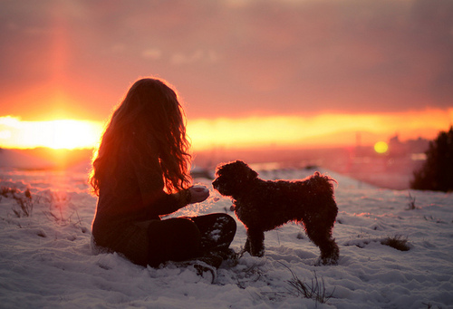 Dog-girl-snow-sun-winter-favim.com-192409_large