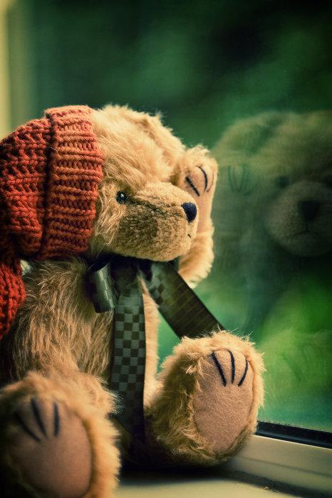 Ursinho-olhando-na-janela_large