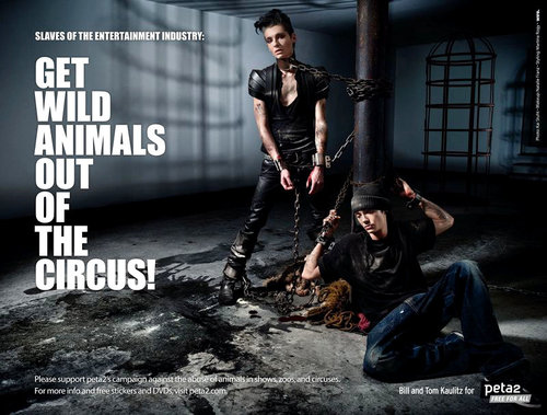 Tokio_hotel_join_peta_boycott_animal_circuses_large