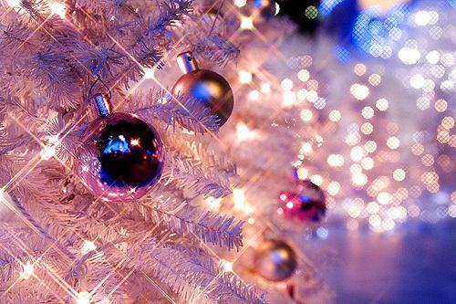 5 Décembre - Mon Bonheur du Jour