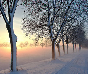 beautiful nature winter