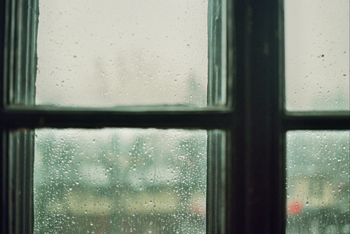 ☯☯☯ - rainy day on Flickr