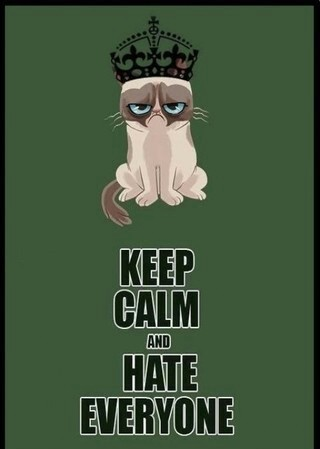 Keep Calm and hate everyone  We Heart It  cat, funny, and hate
