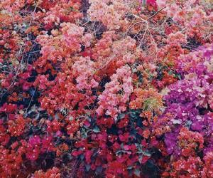 Classy Tumblr Backgrounds | www.pixshark.com - Images ...