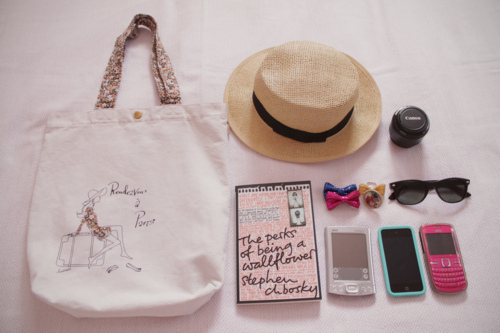 Accessories-bag-bow-canon-cellphone-favim.com-211329_large