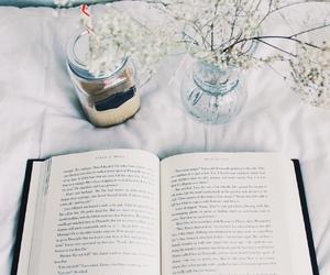 books-cupcakes tumblr
