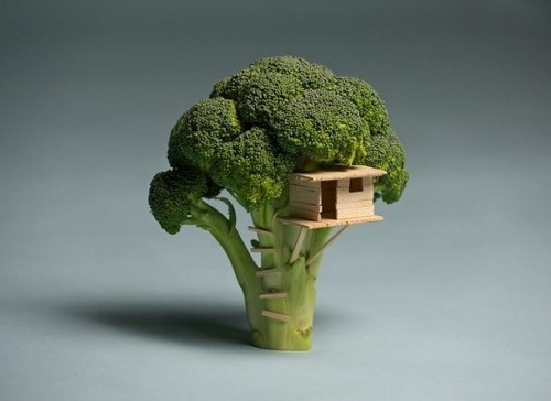 Piccsy :: broccoli house tree
