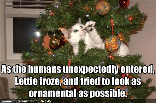 Funny-pictures-cat-in-tree-tries-to-look-ornamental_large