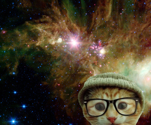omg cats in space tumlr
