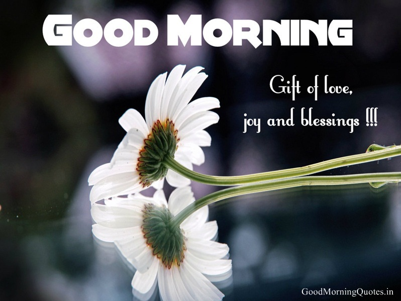 Best Good Morning Messages with HD Image by kimbakoliya | WHI