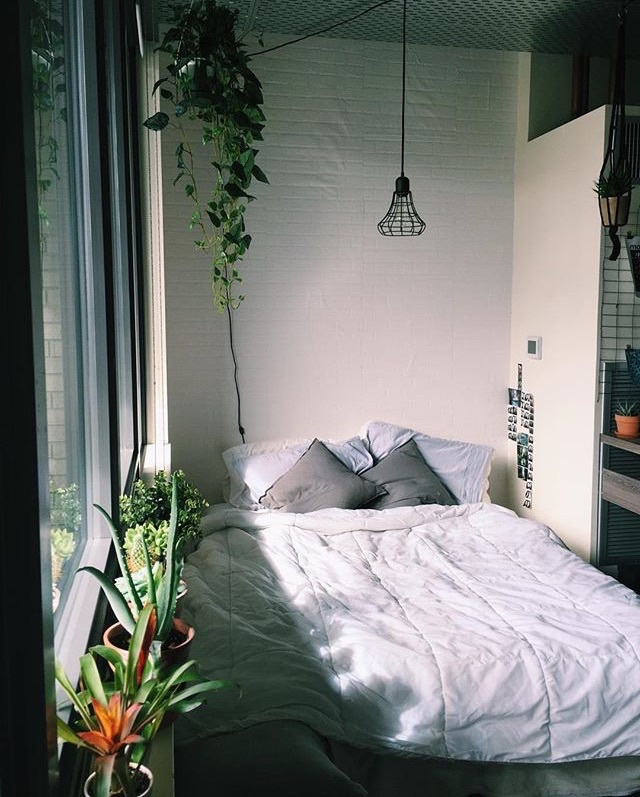Bedroom With Lots Of Plants Diy Home Plans Database