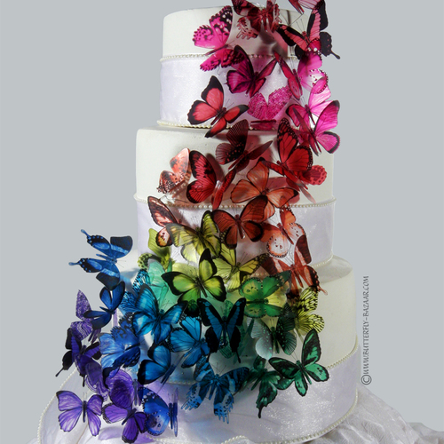 Martha Stewart Butterfly Wedding Cake? « Weddingbee Boards