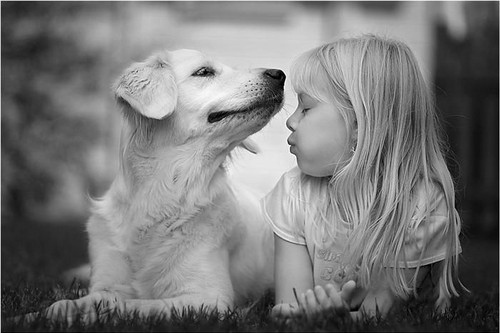 33a47ba0f7cde48676f95bf214219121 large Child Cute Dog Friends Girl Kiss Like dem Photography Ternura Puppy   PicShip