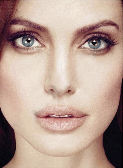 Angelina-jolie-marie-claire-january-2012_large
