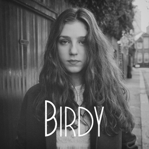 ☁ birdy Composition ☂