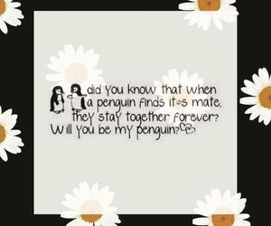 penguin love together