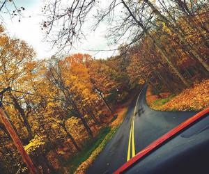 "Brooke Marie Hyland♡ on Instagram: ""🍁🍂🍃"""