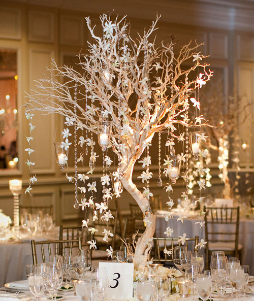 Manzanita-centerpiece-34_large