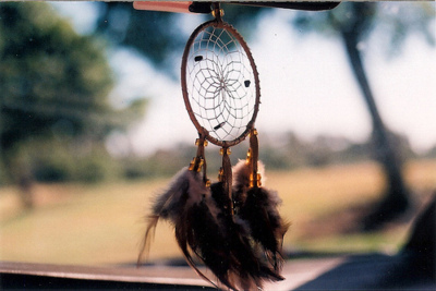 Catcher-dream-feathers-hipster-favim.com-262657_large