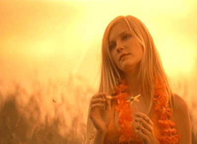 164790_virgin_suicides2_large