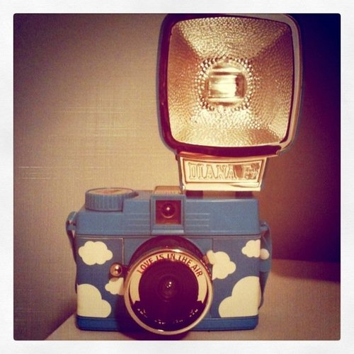 Dianaf-lomo-love-is-in-the-air-mini-diana-photography-favim.com-267877_large
