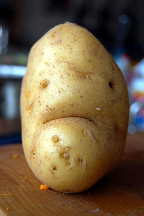 Sad-potato_large