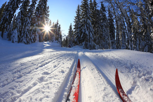 Nordic-skiing_large