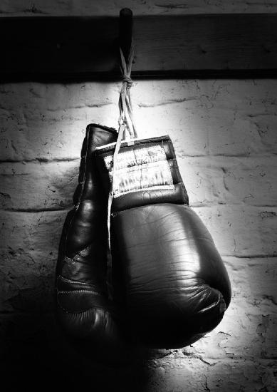 Boxinggloves_large