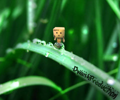 Google Image Result for http://fc01.deviantart.net/fs71/i/2010/186/6/f/Box_Robot_on_a_Leaf_by_DwashProductions.jpg