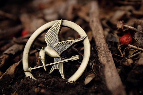 Hunger Games: May the odds be ever in your favor pt. 1