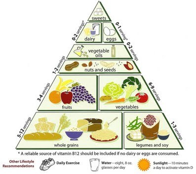 Loma_linda_university_vegetarian_food_pyramid_large