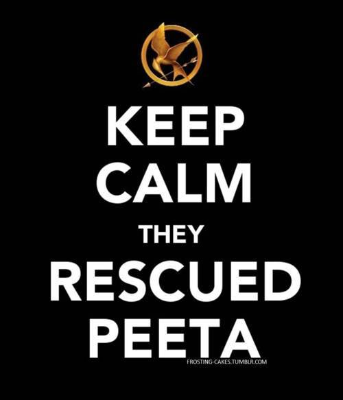 Keep-calm-the-hunger-games-24963291-500-583_large