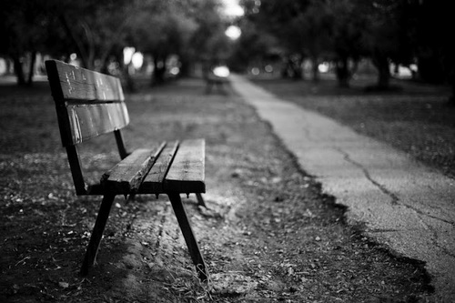 Bench+in+park_large