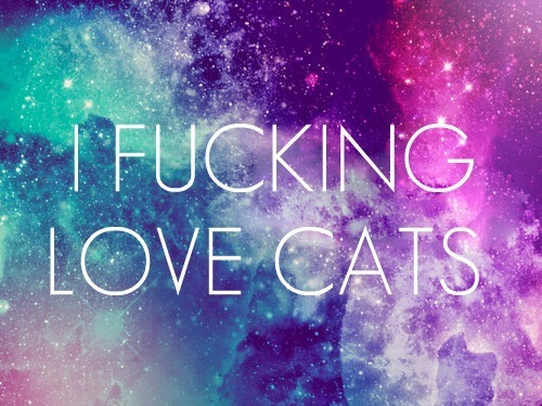 Cat-cats-colours-fucking-love-favim.com-299252_large