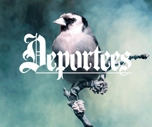 deportees music bird