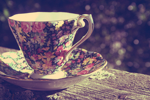 Colourful-cup-flowers-photography-favim.com-216938_large