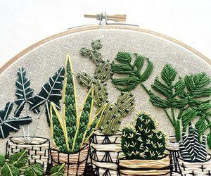 embordery plants