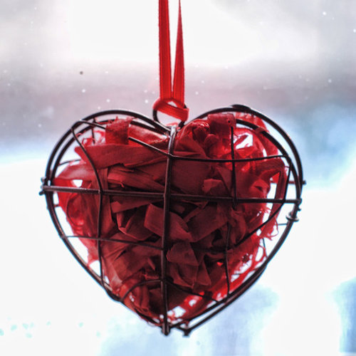 Happy_valentines_day_by_bluecoloursofnature-d4pmiuu_large