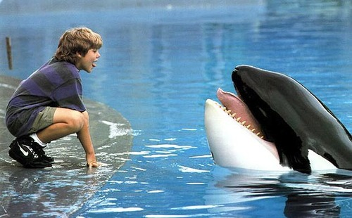 Allstarcinetext_freewilly630-1346_large