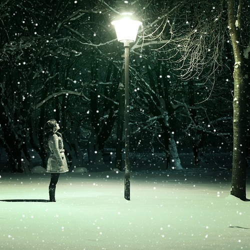 Lamp_post_night_snow_winter_narnia_branches-307fcdc5d8c15a69d087dab35a896e23_h_large