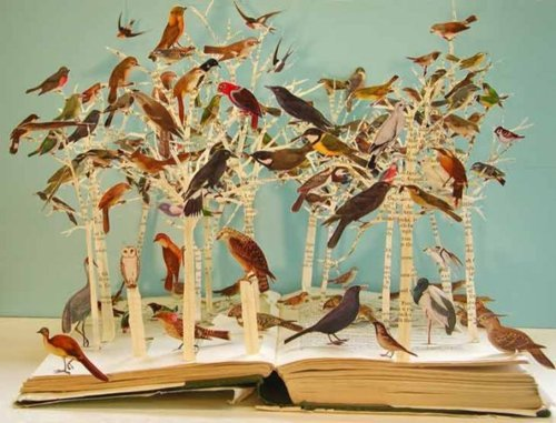 Scientific Illustration | fullbloom: (via Portfolio Book-Cut Sculpture)