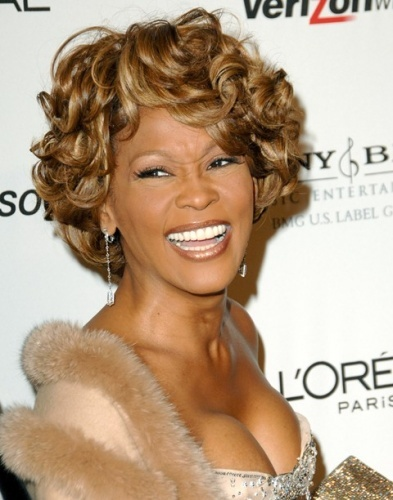 1202120130065350-rip-whitney-houston_large