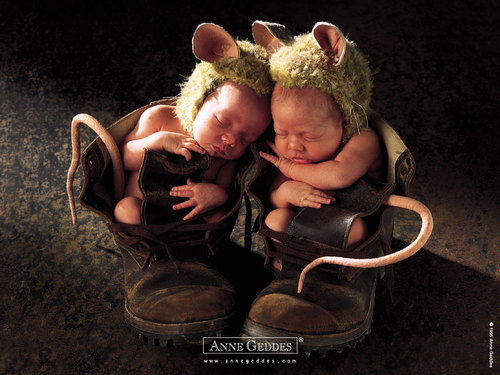 Anne_geddes_wallpaper_122_large