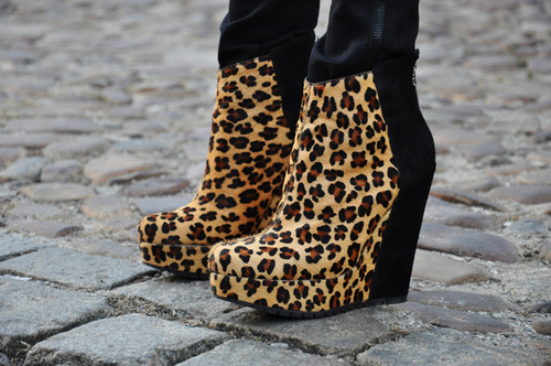 Cheetah-fashion-high-heels-wedges-favim.com-303565_large