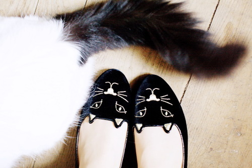 Charlotte-olympia-kitty-flats-02_large
