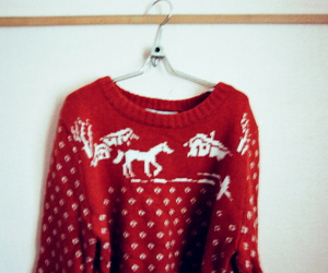 sweater deer photography