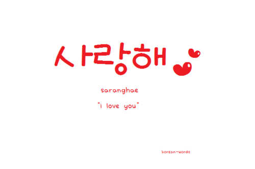 Korean Words i Love You Group of Korean Words
