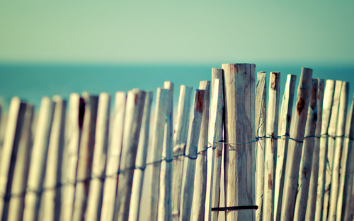 Tags Picket Fence Picket Fences White Picket Fencing