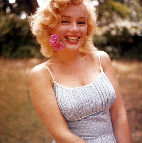 Marilyn-monroe-532-793x800_large