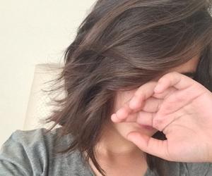 shorthair